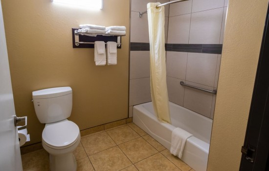 Econo Lodge Inn & Suites Fallbrook Downtown - Private Bathroom
