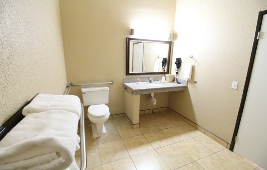 Econo Lodge Inn & Suites Fallbrook Downtown - Accessible Bathroom