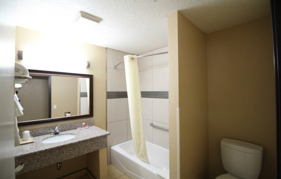Econo Lodge Inn & Suites Fallbrook Downtown - Guest Bathroom